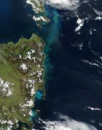 Algal bloom off Tasmania