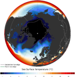 Arctic annual mean sea surface temperature