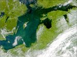 Phytoplankton bloom in the Baltic Sea 2001