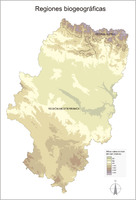 Honduras Elevation Level Curves Map