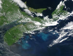 Phytoplankton bloom off Nova Scotia