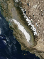 Niebla en California