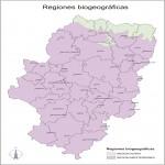 Mapa de Chontales, División Político-Administrativa del Departamento, Nicaragua