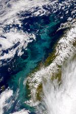 Proliferación en el mar de Noruega