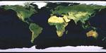 Mapa Satelital del Mundo