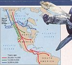 First Americans Migration Routes