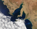 Phytoplankton blooms off South Australia