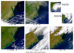 Effects of Hurricanes Dennis and Floyd in North Carolina
