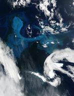 Phytoplankton bloom off South Georgia