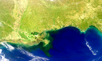 Costa del golfo, Estados Unidos