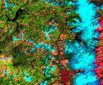 Deforestación en Oregón
