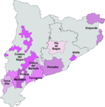 Catalonia wines 2008