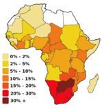 HIV/AIDS in Africa 2004